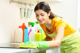 Reasons to Hire a Maid Service Salt Lake City